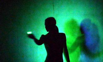 Evolution Dance Theater – Night Garden